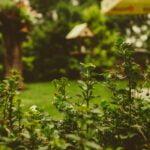 Reformas interiores y exteriores antes del verano